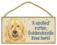 GOLDENDOODLE A Spoiled Rotten DOG wood SIGN Wall PLAQUE puppy GOLDEN DOODLE NEW