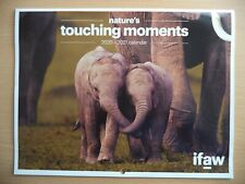 IFAW - NATURES TOUCHING MOMENTS. 2021 CALENDAR