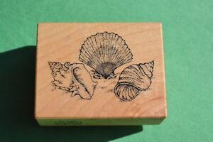 Rubber stamp -  PSX - D-190 - seashells - combined shipping