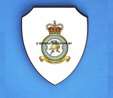 ROYAL AIR FORCE 6 FORCE PROTECTION WING WALL SHIELD (FULL COLOUR)
