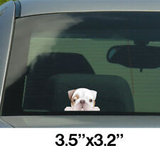English Bulldog Sticker, Decals 002