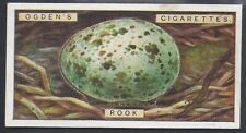 OGDENS-BIRDS EGGS 1923 (CUTOUTS)-#33- ROOK