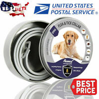 Dewel Flea and Tick Collar Adjustable for Small Medium Large Dog Pet Over 18lbs