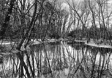 OLD POSTCARD - GERMANY - Bodensee - Jdylle - 1904