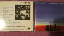EDIE BRICKELL - PICTURE PERFECT MORNING. CD