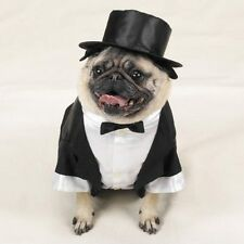 Tux with Tails and Top Hat Pet Costume