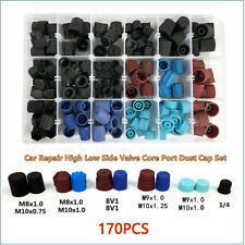 170pcs Car Repair A/C R134a R12 High Low Side Valve Core Port Dust Cap Tool Kit