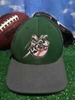 Rare Hornets bees baseball minor league flex fit Fitted large to XL  Hat Cap H38