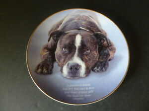 """DANBURY MINT STAFFORDSHIRE BULL TERRIER COLLECTOR PLATE """"A PLEASURE TO BEHOLD"""""""