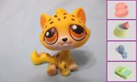Littlest Pet Shop Tabby Leopard Kitty Cat 388 Free Accessory Authentic