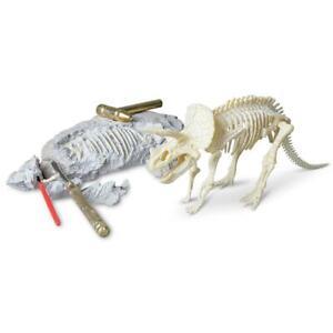 Triceratops |  Palaeontology Kit