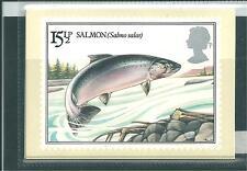 GB - PHQ CARDS - 1983 - BRITISH RIVER FISH -  COMP SET MINT