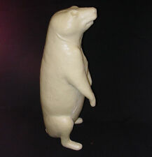 Taxidermy Form Groundhog Sitting Up  RT Looking Up 1  3/4 X 19