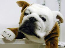 KOSEN Made in Germany NEW Lying English Bull Dog Plush Toy
