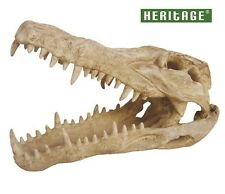 ✔ Heritage WP024MN Aquarium Fish Tank Grand Croco Crocodile Skull ornament 25 cm