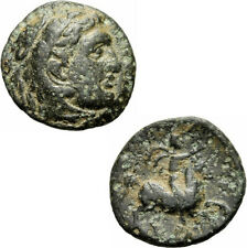 Philipp III Arrhidaios King of Macedon Bronze Coin Heracles Horseman Price 126