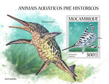 Mozambique 2019   fauna    Prehistoric water animals S201910