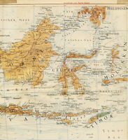 Indonesia Philippines Timor 1943 orig. part map Borneo Celebes Bali Java Lombok