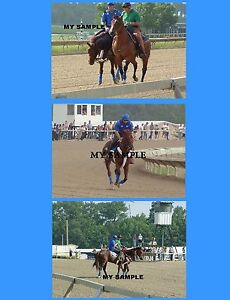 """3 SMARTY JONES 2004 PHILLY PARK PARTY HORSE RACING WORK OUT 8"""" by 10"""" PHOTOS"""
