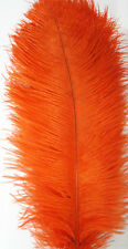 A Dozen 22-24 inches 12 Pieces Orange Ostrich Feathers (Ga, Usa)