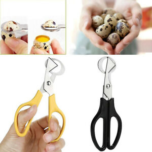 1PC Rust Resistant Kitchen Quail Egg scissor Stainless Steel Tools Random