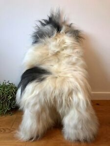 XXL Large Genuine Icelandic Sheepskin Sheep Rug Ivory/Cream Black Real Long Fur