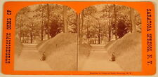 RAMBLES IN CONGRESS PARK DEER SARATOGA SPRINGS NY STEREOVIEW 1800'S