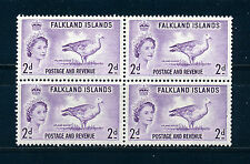 FALKLAND ISLANDS 1955 DEFINITIVES SG189 2d (BIRD) BLOCK OF 4 MNH