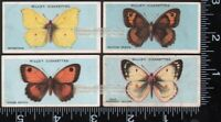 4 c90 Year Old  British Butterfly Trade Ad Cards 4