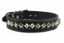 "Real Leather Spikes Dog Collar 19,7-24"" neck size 1.4 wide Cane Corso Rottweiler"