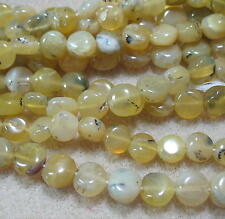 "Yellow Opal 8mm Coin Beads 13"" Spacer Accent Natural Color Opaque Translucent"