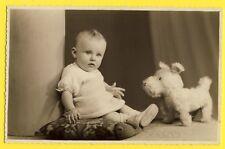 cpa PHOTO GEORGES à BRUXELLES BÉBÉ sur COUSSIN Avec CHIEN en PELUCHE Jouet Toy
