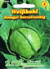 Weißkohl Amager kurzstrunkig robust Weißkraut (Abverkauf  Jan. 2021) 416203