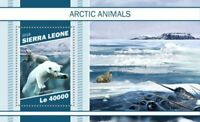 Sierra Leone - 2018 Arctic Animals - Stamp Souvenir Sheet - SRL181109b