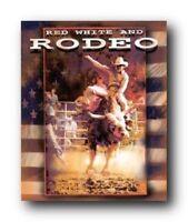 Vintage Western Rodeo Cowboy Horse Riding Wall Decor Art Print Poster (16x20)