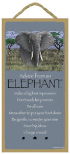 Advice from an Elephant Be gentle no matter your size Charge ahead 10X5 Sign C32