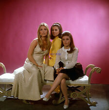 Valley Of The Dolls Sexy Sharon Tate Patty Duke Barbara Parkins