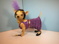 AYE CHIHUAHUA-Flapper Dog  Chihuahua  Figurine By Westland-New In Box