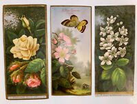 Three 1880 Victorian Christmas Cards ~ Butterfly Flowers Roses-Perfect Bookmarks