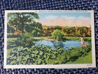 1948 Garden in Country Club District Kansas City MO Missouri Linen Postcard