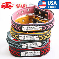 Personalized Dog Collar Braided Leather Padded Name ID Tag Engraved Free XS-XL