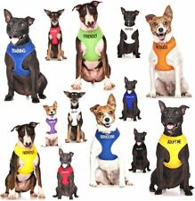 Harnais noirs en nylon pour chien