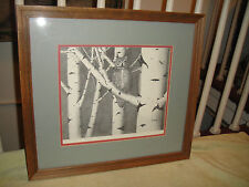 Superb Drawing Print By Jack Mesick-Owl In A Tree Artwork-Signed & Numbered-LQQK