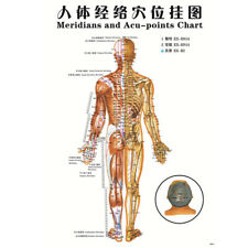 7pcs English Acupuncture Meridian Acupressure Points Posters Chart Wall Map SP
