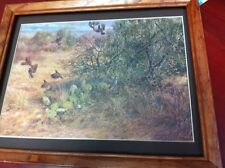 Bobwite quail in the desert hunting picture ready to hang on the wall