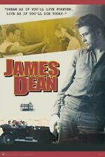 JAMES DEAN ~ DREAM MONTAGE ~ 24x36 Movie Poster ~Giant As If You'll Live Forever