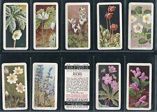 Brooke Bond Canada - Dinosaurs, Songbirds, Wild Flowers - Pick Your Card