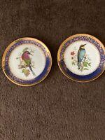 Limoges Cobalt Blue And Gold Bird Plates- Rare antique Plates
