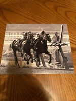 STEVE CAUTHEN SIGNED AUTOGRAPHED 8X10 PHOTO 1978 TRIPLE CROWN WINNER AFFIRMED 2