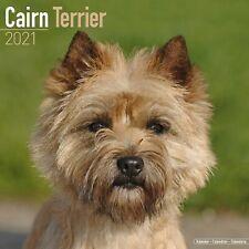 Cairn Terrier Calendar 2021 Premium Dog Breed Calendars